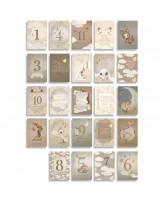 Verjaardag MILESTONE CARDS