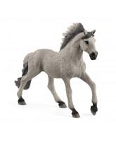 Figuur Sorraia Mustang Stallion